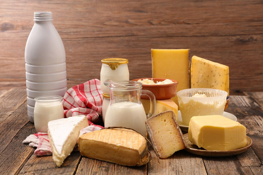 Dairy products are manufactured from the milk of mammals.