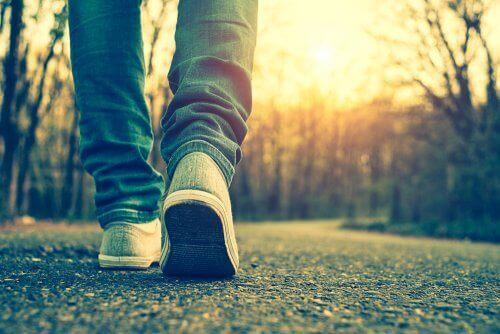 Caminar mediante un bosque