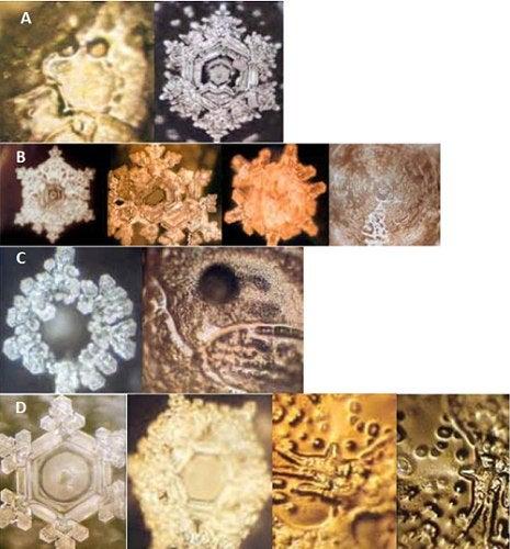 El lenguaje oculto del agua es un experimento que realizó, en la década de los noventa, el doctor Masaru Emoto