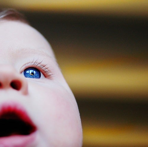 Trastornos en el aprendizaje, ¿cómo podemos ayudar los padres?