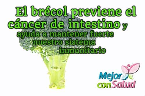 brecol-cancer-intestino