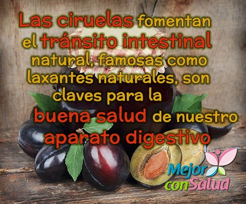 ciruales-transito-intestinal