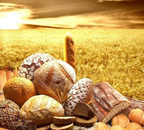 distintos tipos de pan