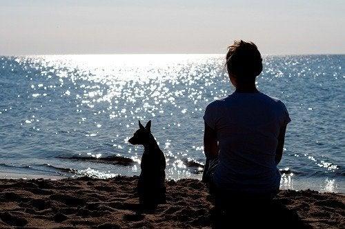 Una dosis de soledad es necesaria en nuestras vidas