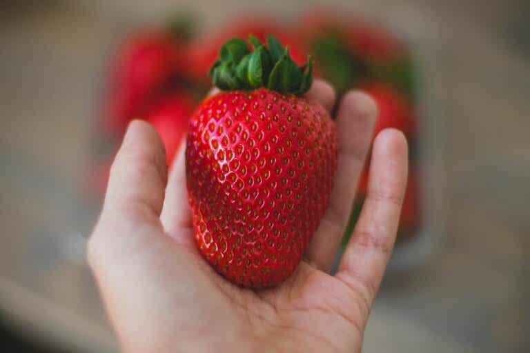 Dieta de la fresa para adelgazar: ¿mito o realidad?