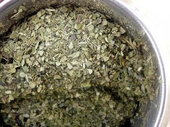 prostatitis crónica de té verde