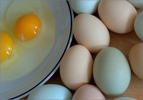 saber-sobre-los-huevos