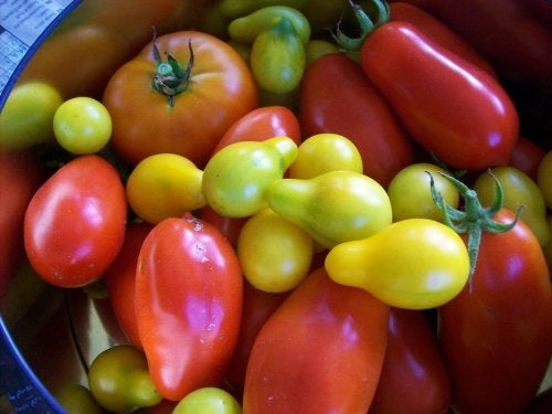 Puré de verduras, una comida sana para todos paladares