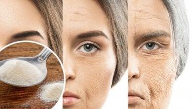 Alimentación, colágeno y piel