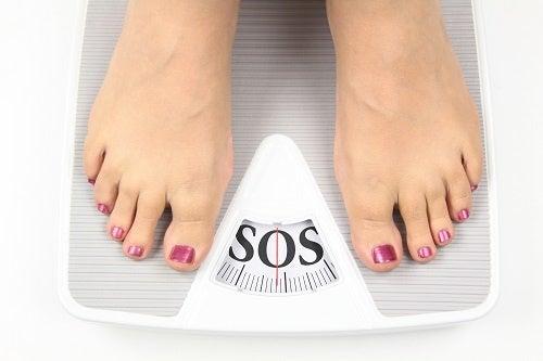 Cómo calcular el índice de masa corporal y las calorías requeridas