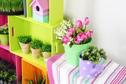 Plantas sobre los muebles.