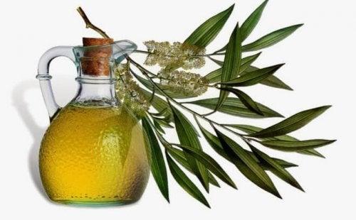 ¿Aceite esencial del árbol de té para tratar el acné?