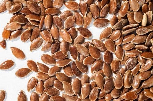 Alimentos ricos en omega 3, ácidos grasos esenciales para la salud