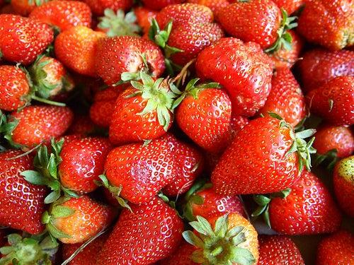 La fresa: Una sabrosa fruta silvestre