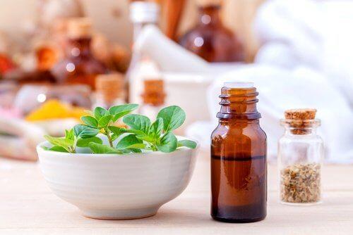 El orégano y sus variados usos medicinales
