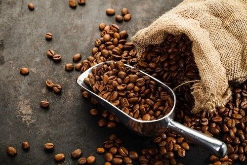 Es desaconsejable tomar café en la dieta de frutas.