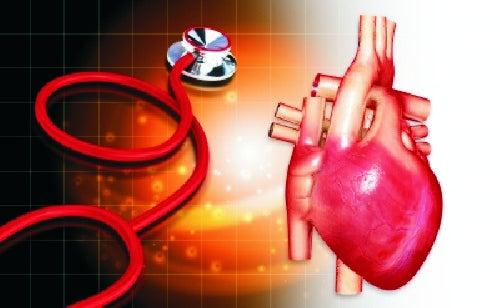 Consejos para cuidar la salud del corazón