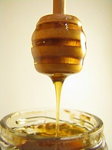 La miel, un alimento con propiedades cicatrizantes