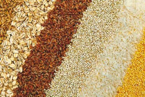 ¿Qué beneficios aportan los granos enteros a nuestro organismo?