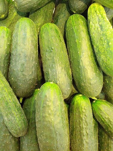 Los diversos beneficios de consumir pepino