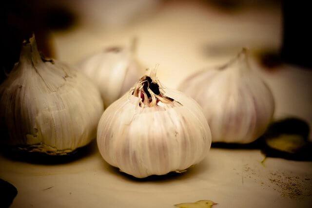 Descubre los grandiosos beneficios del ajo en ayunas