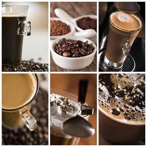 Conoce las propiedades del ácido cafeico