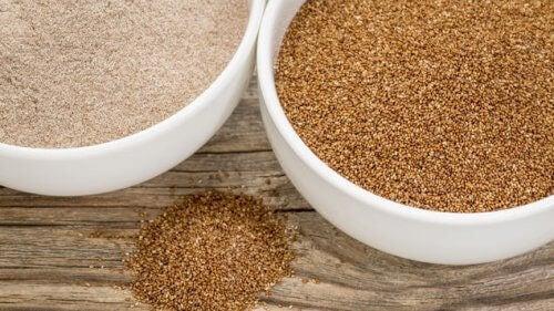 Diferentes tipos de harinas