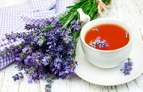 Infusion of lavender