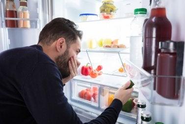 Refrigeradora con malos olores