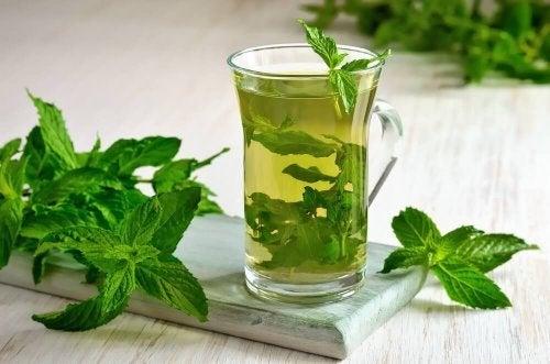 El té de menta es también especialmente útil durante periodos gripales