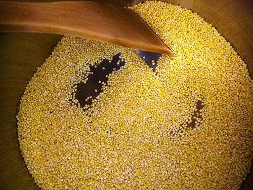 Los beneficios del mijo, el único cereal alcalinizante