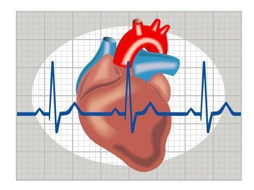 ¿Sabes reconocer y prevenir la taquicardia?