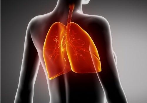 Cómo mejorar naturalmente la fibrosis pulmonar