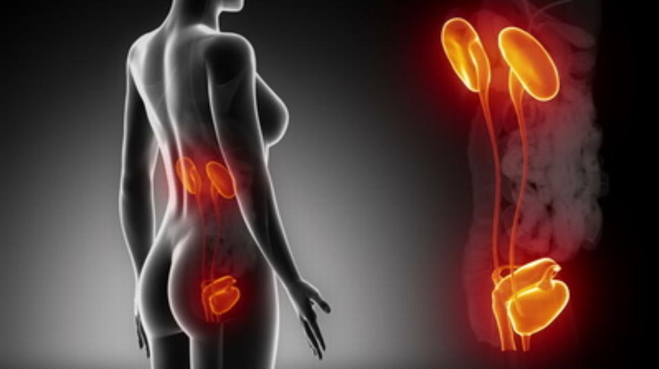 Sheynyy la osteocondrosis la inestabilidad de las vértebras el tratamiento
