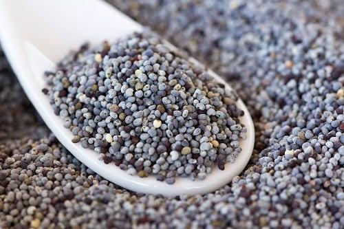 Propiedades de las semillas de amapola - Mejor Con Salud