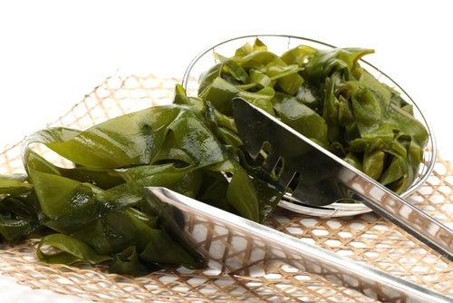 Las algas son uno de los alimentos ricos en proteína vegetal