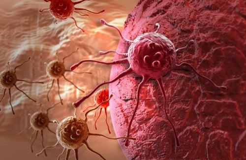 El cáncer es una de las enfermedades de los ovarios