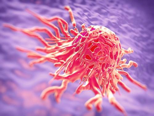 Descubre los alimentos potencialmente cancerígenos