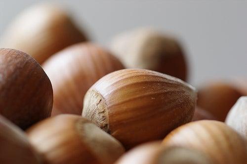 Avellanas, uno de los mejores frutos secos
