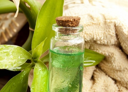 Descubre los 10 mejores aceites esenciales