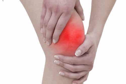 Remedio con ortigas para aliviar el dolor articular