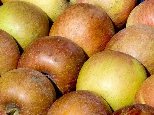 Cómo ayudan los antioxidantes al organismo_