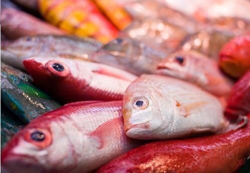 tipos de pescado que podrían resultar perjudiciales para la salud: atún rojo
