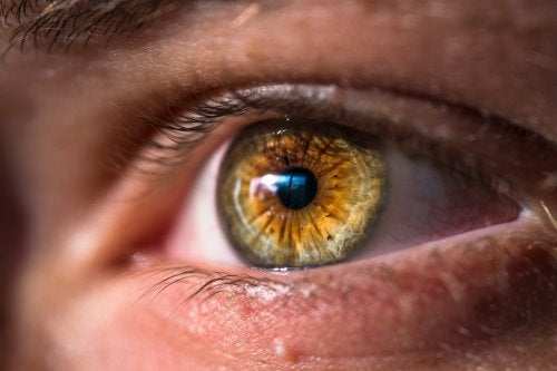 ojo remedio
