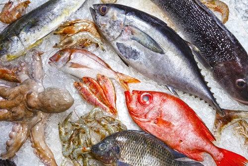 Distintos pescados y mariscos