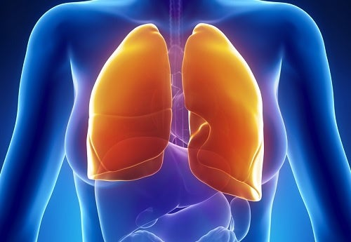 Cómo tratar naturalmente las enfermedades respiratorias