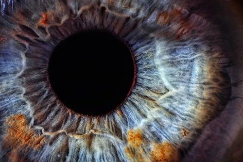 En los ojos venas claras
