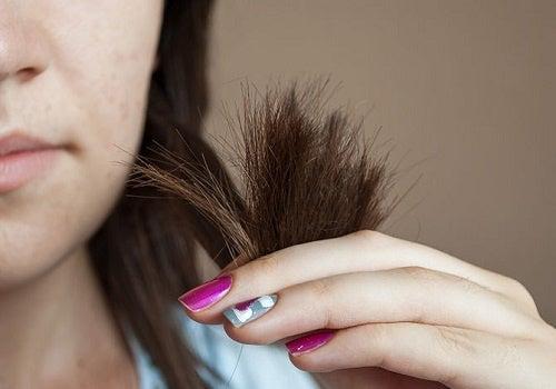 Cabello puntas y vaselina para usos cosméticos