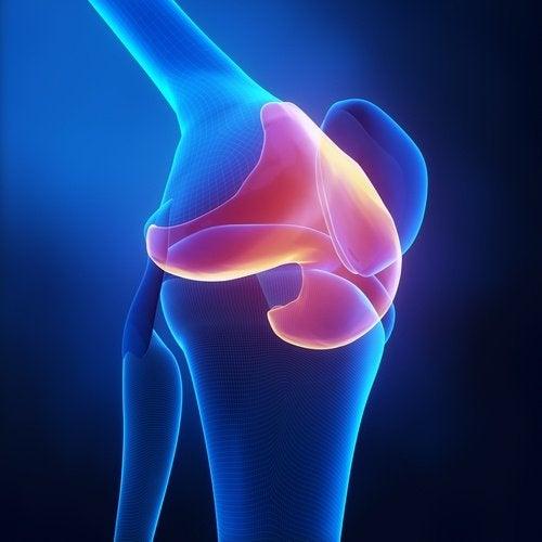 cartílagos dañados rodillas