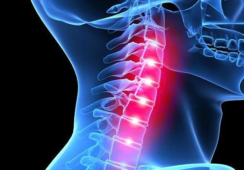 Cómo cambia nuestra columna vertebral debido al estrés